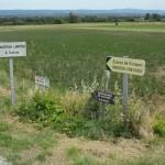 Panneau indiquant la direction du camping à la ferme La Pujade où l'on peut déguster des cassoulets et autres plats régionaux.
